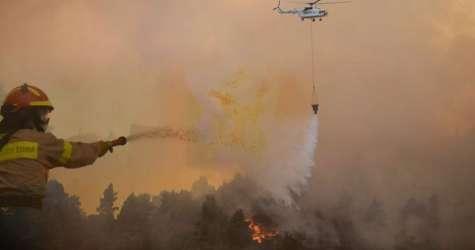 Εύβοια: Μία δασική φωτιά κάθε 36 ώρες